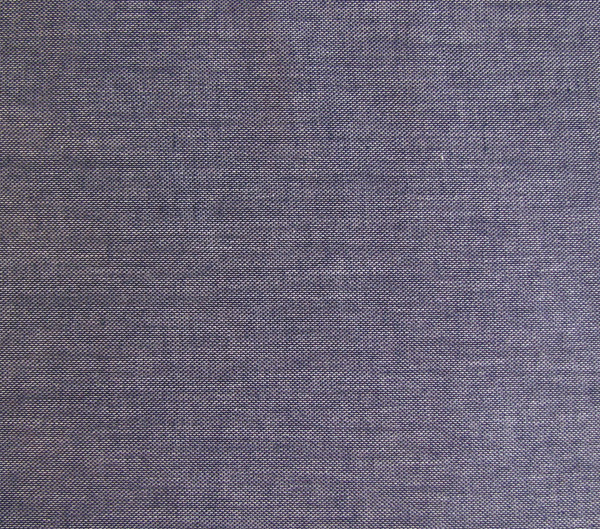 Klee ↨ 310 cm